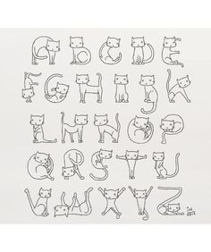 Alfabeto de gatos: cat alphabet - create name tags to welcome new resident-neighbors, coloring pages for days of the week, memory nudges for important events Crazy Cat Lady, Crazy Cats, Creative Lettering, Cat Crafts, Cat Drawing, I Love Cats, Cat Art, Cat Lovers, Coloring Pages