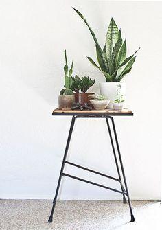 小さめのテーブルを使ってグリーンを置いて。様々な種類をMIXして、グリーンを楽しめます。シンプルなテーブルとシックな鉢との組み合わせもばっちり。