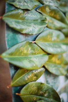 magnolia escort cards | Sunglow Photography