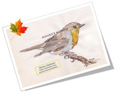 Nature's audacity! A Robin in my garden. W&N watercolour ©Maree Clarkson - http://www.redbubble.com/people/mareeclarkson/portfolio?asc=u