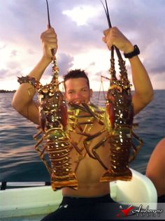 Monster Lobsters in San Pedro, Ambergris Caye, Belize