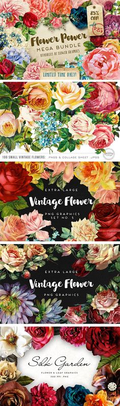 What a brilliant collection of vintage flower graphics! This mega bundle also contains other botanical graphics, silk flowers, wreaths, borders, and vintage forest botanicals. Great value for money.