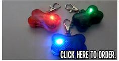 """Feb 23, 2014 - """"The first night we used these lights my dogs got away from me and ended up in the street. A car saw them and stopped. I am convinced these lights saved all 4 of my dogs lives."""" Available TODAY for only $0.01 (Regularly $7.99)   Click >> http://ptflw.com/OrderNow"""