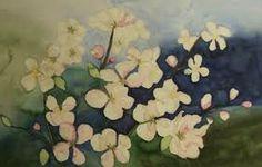 aquarell apfelblüten - Google-Suche
