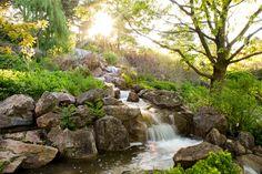 Waterfall-in-a-Japanese-Garden-13.jpg 1,024×685 pixels
