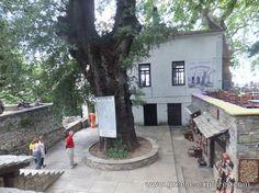 Village Makrinitsa in Mount Pelion Greece, Patio, Explore, Places, Outdoor Decor, Home Decor, Homemade Home Decor, Yard, Lugares