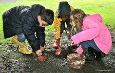 Twitter Forest School Activities, Reggio, Outdoors, Twitter, Outdoor Rooms, Off Grid, Outdoor