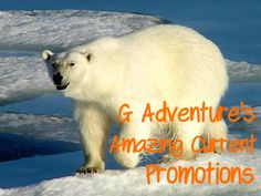 Amazing 15% off selected trips with G Adventures! Click on the image for details. Or pin for later.