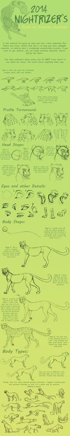 Guide to Drawing Cheetahs by Nightrizer on DeviantArt