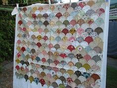 I want to make a Clamshell quilt.