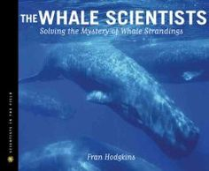 The whale scientists : solving the mystery of whale strandings