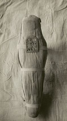 Mummy of Prince Amenemhat before Unwrapping, 1919, by Ambrose Lansing