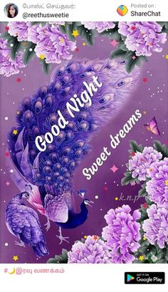 Lovely Good Morning Images, Good Night I Love You, Good Night Sweet Dreams, Good Night Moon, Good Night Image, Good Morning Good Night, Good Day, Good Night Blessings, Good Night Wishes