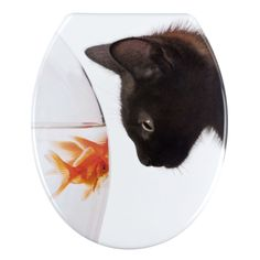 Thermoset toilet seat and cover compressed resin with molded decoration  movie Tropical Fish Clear Resin Toilet Seat   81110   Tropical fish  . Tropical Fish Toilet Seat. Home Design Ideas
