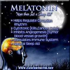 Melatonin also stimulates the immune system and increases the cancer-killing activity of macrophages, monocytes, natural killer cells, T-helper cells and eosinophils, all of which are involved in cancer cell destruction.