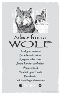 Advice from a wolf: Trust your instincts. Be at home in nature. Keep your den clean. Stand fur what you believe. Stay on track. Howl with your friends. Be a leader. Pack life with good memories! Animal Spirit Guides, My Spirit Animal, Der Steppenwolf, Solas Dragon Age, Wolf Stuff, Trust Your Instincts, Wolf Pictures, Wolf Photos, Wolf Love