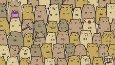 Can YOU find the potato in this sea of adorable hamsters? Hamsters, I Spy Books, Can You Find It, Wheres Wally, Hidden Pictures, Hidden Pics, Hidden Objects, Brain Teasers, Bingo