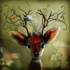 photo Alexander-Jansson-and-his-great-imagination5__880_zpsntlvfh1n.jpg