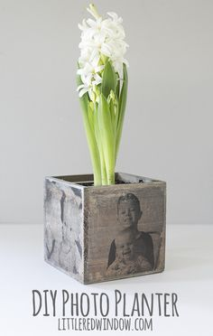 DIY Photo Planter, transfer cute family photos to this adorable wood planter, it\'s a perfect gift for Mother\'s Day! | littleredwindow.com
