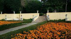 Il palazzo/convento di #Mafra in #Portogallo | Lilly's lifestyle #inportogalloconlilly http://lillyslifestyle.com/2015/11/24/il-palazzoconvento-di-mafra-in-portogallo/