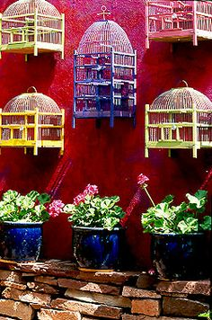 collection of multi-colored bird cages on red wall