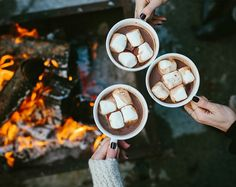 Hot chocolate with marshmallows by the fire bonfire. Fall inspiration and photo ideas. Things to do during fall. Winter Christmas, Fall Winter, Christmas Minis, Rustic Christmas, Fall Inspiration, Autumn Aesthetic, Christmas Aesthetic, Brown Aesthetic, Flower Aesthetic