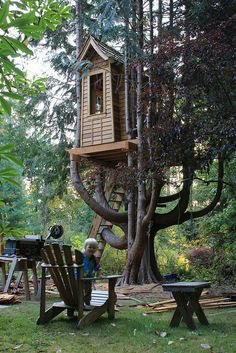 Fancy Tree House in a fir