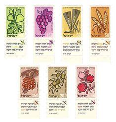 seven species in hebrew - Google Search