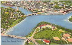 aerial view ~ tampa ~ florida
