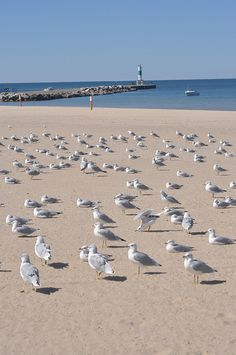Relaxing At The Beach by Pure Michigan, via Flickr