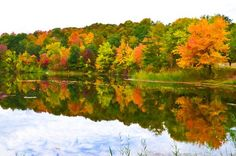 New print available on lanjee-chee.artistwebsites.com! - 'Autumn with colorful foliage and water reflection 15' by Lanjee Chee - http://lanjee-chee.artistwebsites.com/featured/autumn-with-colorful-foliage-and-water-reflection-15-lanjee-chee.html via @fineartamerica