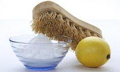 5 remedios caseros para pulgas y garrapatas que deberías conocer - IMujer