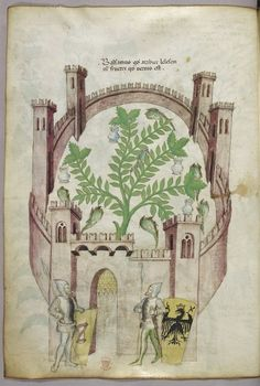 Miniature of the balsam garden of Cairo (Fustat), with seven pools of water and jars to catch the balsam, a plant in the centre, with two knights in armour flanking the gate, with shields with heraldic arms.