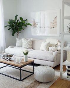Neutral gray living room