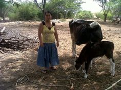 Kiva - Loans that change lives Loan Money, Connect Online, Cattle, First World, Cow
