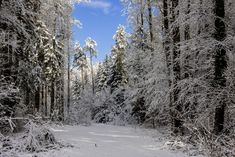 Gastbeitrag: Winterfotografie Tipps - Fashionladyloves