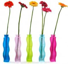 Gerber daisies in colored vases