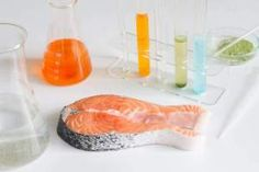 Intoxication au mercure : peut-on encore manger du poisson ? Kinds Of Diseases, Fish Farming, Fat Burning Foods, Baby Health, Healthy Alternatives, Junk Food, Salmon, Healthy Living, Canning