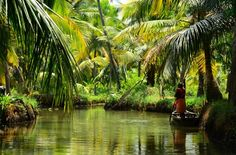"""Those who dwell among the beauties and mysteries of the Earth are never alone or weary of life. Places To Travel, Places To See, Kerala Backwaters, Amazing India, Travel Activities, Fun Activities, Kerala India, The Beautiful Country, Boat Tours"