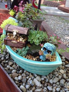 Mini garden's not just for girls!  How about a pirate garden