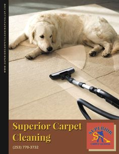 #CarpetSteamCleaning #UpholsteryCleaning #AirDuctCleaning #TileCleaning #GroutCleaning #PetStainRemoval #OdorRemoval #CarpetRepair #CarpetStretching #RoofCleaning #HouseCleaning #GutterCleaning #PressureWashing #FreeEstimate #EmergencyService #SuperiorCarpetCleaning #CarpetCleaningServices #SuperiorHomes