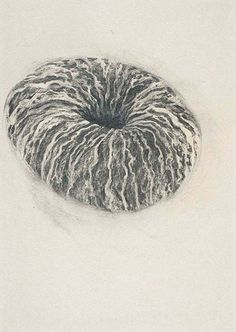 Flora Hitzing - untitled, charcoal on paper, 2008