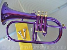 Flugelhorn...in Ravens purple!