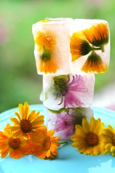 How to make floral ice-cubes.