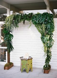 Tropical Wedding Arch perfect for coastal weddings. Contains monstera, hanging amaranthus, Italian ruskus, lemon leaf, umbrella palm and robellini. For color hibiscus would be a nice touch.