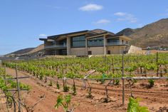 Museo del Vino, Valle de Guadalupe, BC. Wine Museum at Valle de Guadalupe, Baja California, Mexico. #winemuseum #museums #wine #valledeguadalupe #mexico