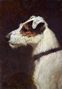 Fox Terrier Dog Art ~ An image of My best friend by Douglas Fry, 1910 Wire Fox Terrier, Fox Terriers, Vintage Dog, Fauna, Jack Russell Terrier, Dog Portraits, Animal Paintings, Dog Art, Painting Inspiration