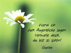 ... johann wolfgang von goethe 1749 1832 deutscher dichter mehr gedichte