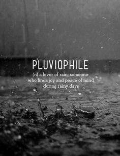 Pluviophile (n) a lover of rain; someone who finds joy and peace of mind during rainy days. I suppose this is why I love living in Seattle.