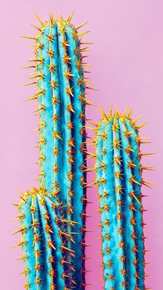 New wallpaper android art illustration backgrounds ideas – Cactus Trendy Wallpaper, Tumblr Wallpaper, New Wallpaper, Screen Wallpaper, Iphone Background Wallpaper, Aesthetic Iphone Wallpaper, Phone Backgrounds, Aesthetic Wallpapers, Android Art